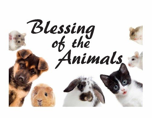 blessings of animals